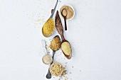 Verschiedene Getreideprodukte für die schnelle vegetarische Küche