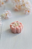 Plum blossom wagashi (ume) from Japan