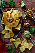 Tortilla chips with dips (guacamole, salsa and a sweetcorn dip) from Mexico