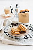 Hazelnut and coffee whoopie pies