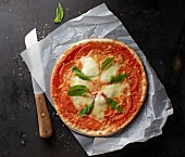 A tomato, mozzarella and basil pizza on a piece of paper with a knife
