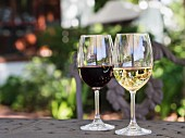 Red and white South African wine in glasses on a garden table
