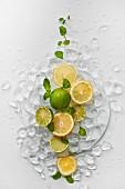 Limetten, Zitronen und Minze auf Eiswürfeln