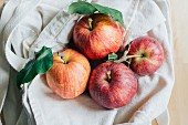 Red apples in a linen bag
