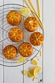 Mini lemon cakes on a wire rack