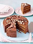 Kaffee-Nutella-Torte