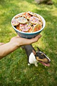 A bowl of biscuits decorated with sugar sprinkles with a dog in a field in the background