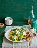 Grünkohlsalat mit Mozzarell und Avocado