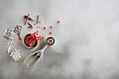 Chocolate garnish and redcurrants
