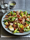 Cobb salad with grilled chicken, eggs, avocado and bacon (USA)