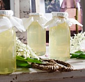 Homemade elderflower syrup between elderflowers