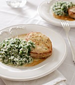 Fried pork medallions with stinging nettle risotto and Parmesan