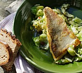 Fried zander on a warm pointed cabbage salad