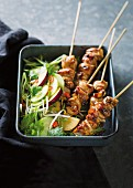 Sate skewers with a cucumber and plum salad