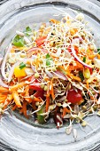 A colourful lentil sprout salad with vegetables
