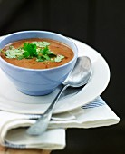 Oriental vegetable soup with coriander