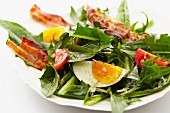 Dandelion leaf salad with tomatoes, hard-boiled eggs and fried bacon