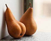 Two pears on a wall