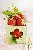 Fresh strawberries in a square vase