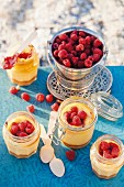 Cheesecake in glasses with raspberries