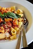 Rigatoni with tomato sauce (Italy)