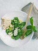 Saubohnen-Parmesan-Salat mit Basilikum und Weissbrot