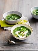 Spinat-Quinoa-Suppe mit Joghurt und eingelegten Peperoni