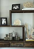 Auf Holzregal mit mäandernder Ablage Meereskorallen, Familienfotos und Mini-Bar