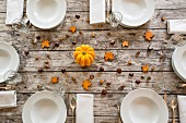 An autumnal laid table with pumpkin, chestnuts and acorns