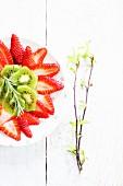 Strawberry carpaccio with kiwi and rosemary