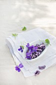 Candied violets with fresh violets and leaves in a dish on a garden table