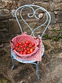 A basket of tomatoes on a pastal-blue patio chair
