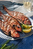 Grilled red snapper with a glass of white wine