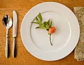 A place setting with cutlery and a fabric napkin decorated with kumquats