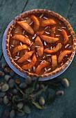 Melon tart with slivered almonds