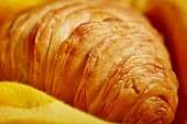 Sfogliatelle (pastry speciality from Naples)