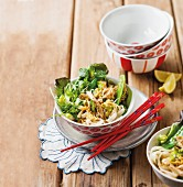 Green vegetable salad with pasta and chicken