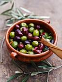 Oliven, mariniert