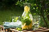 Zitronen-Basilikum-Limonade