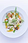 White vegetable ragout