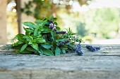 A bunch of fresh herbs with lavender flowers on a wooden table