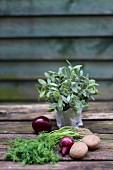 Red onions, potatoes and fresh herbs on a wooden table