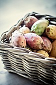 Various prickly pears in a basket