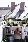 Pflanztisch mit Pflanzen und Gartenutensilien auf Dachterrasse