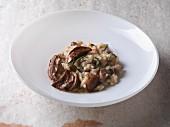 Vegetarisches Maronen-Risotto mit frischen Steinpilzen