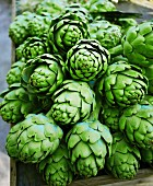 Fresh artichokes at a market in France