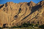 A view of the Ein Gedi kibbutz on the Dead Sea