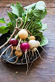 A bundle of colourful radishes on a plate