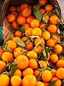 Tangerines at a market