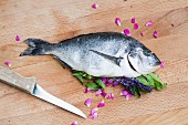 A stuffed gilthead with verbena, rose petals and lavender
